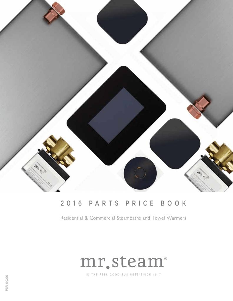 1-Pack Mr Steam IGENIE-BLACK I Genie Control
