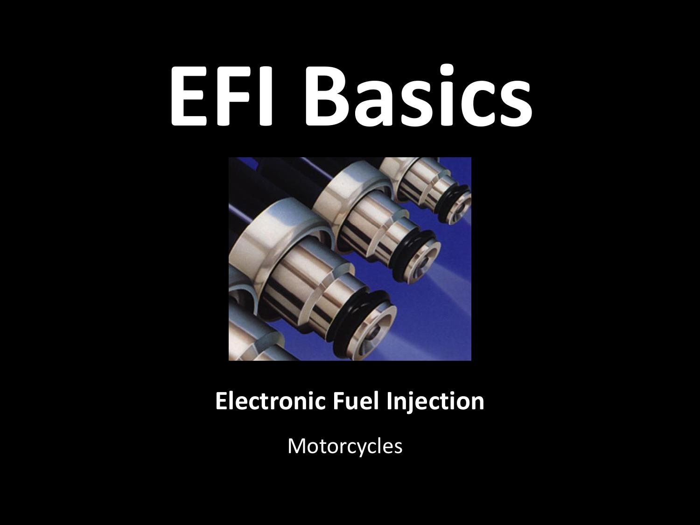 Electronic Fuel Injection EFI Basics   manualzz com
