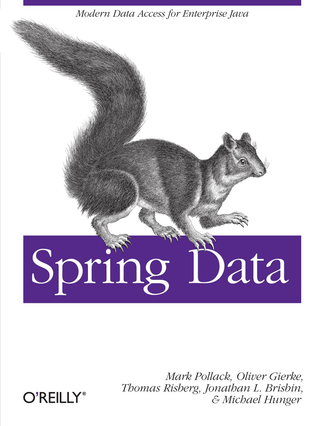Spring Data - Risk Commerce   manualzz com