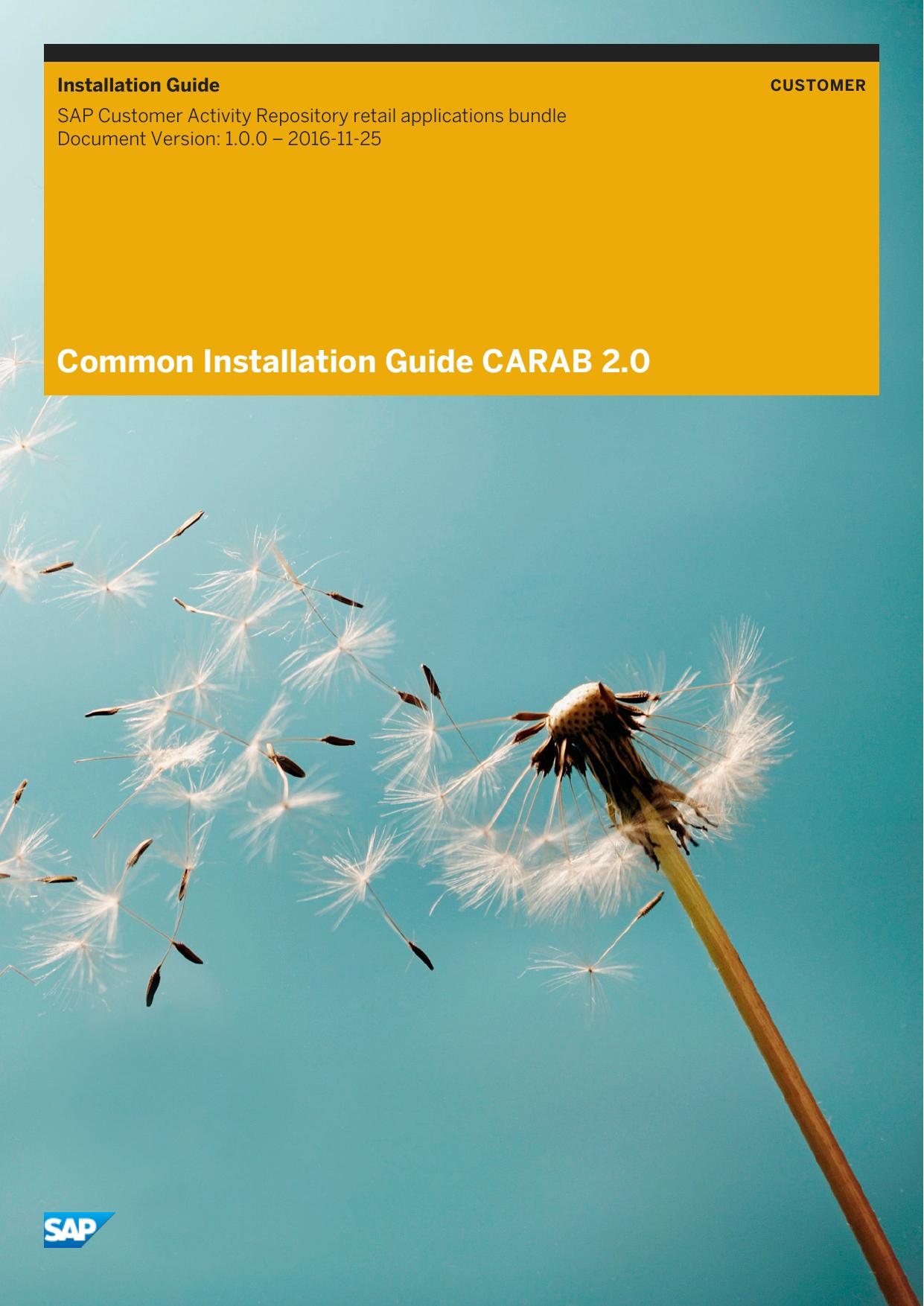Common Installation Guide CARAB 2 0 | manualzz com