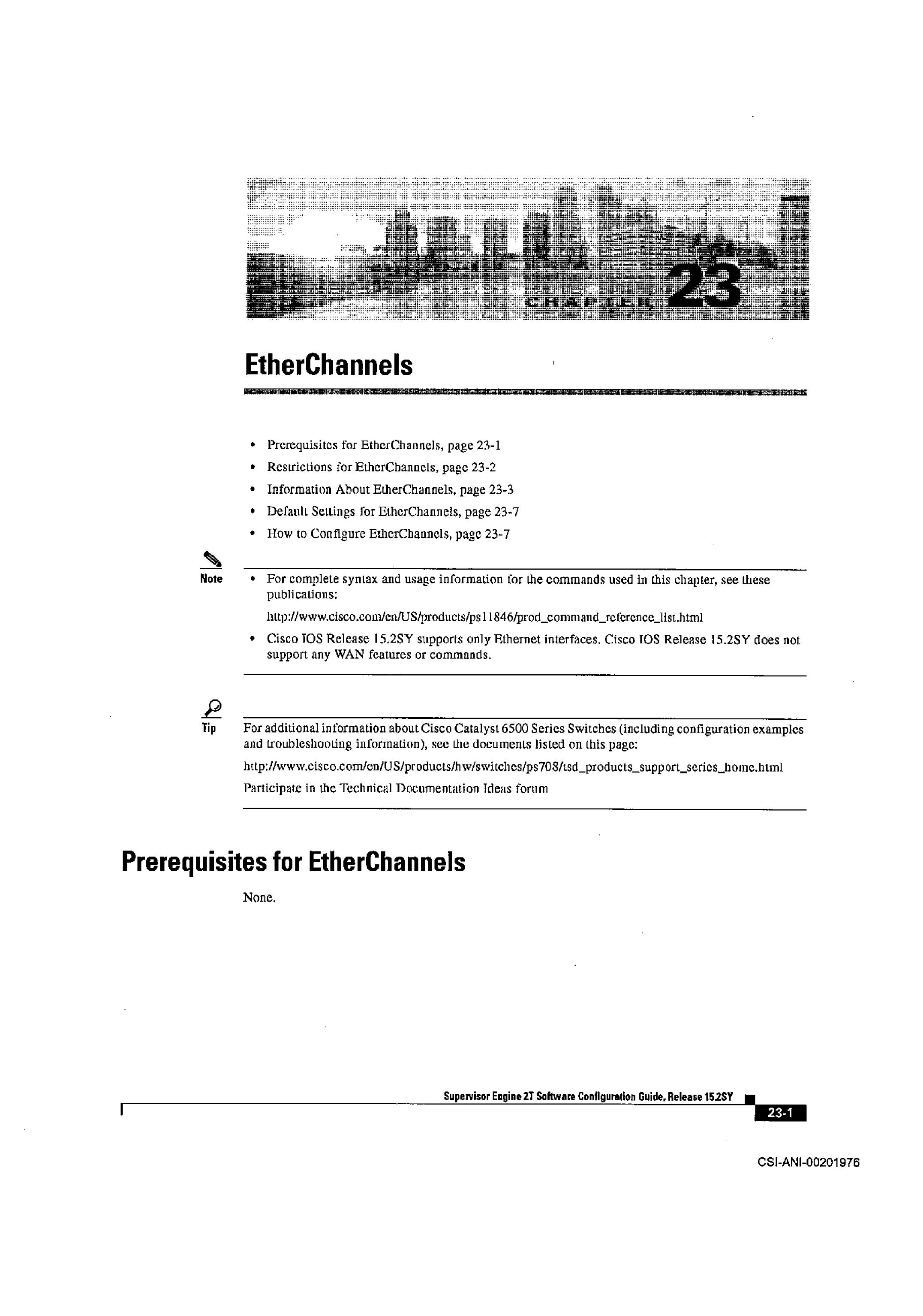 EtherChannels - Docket Alarm | manualzz com