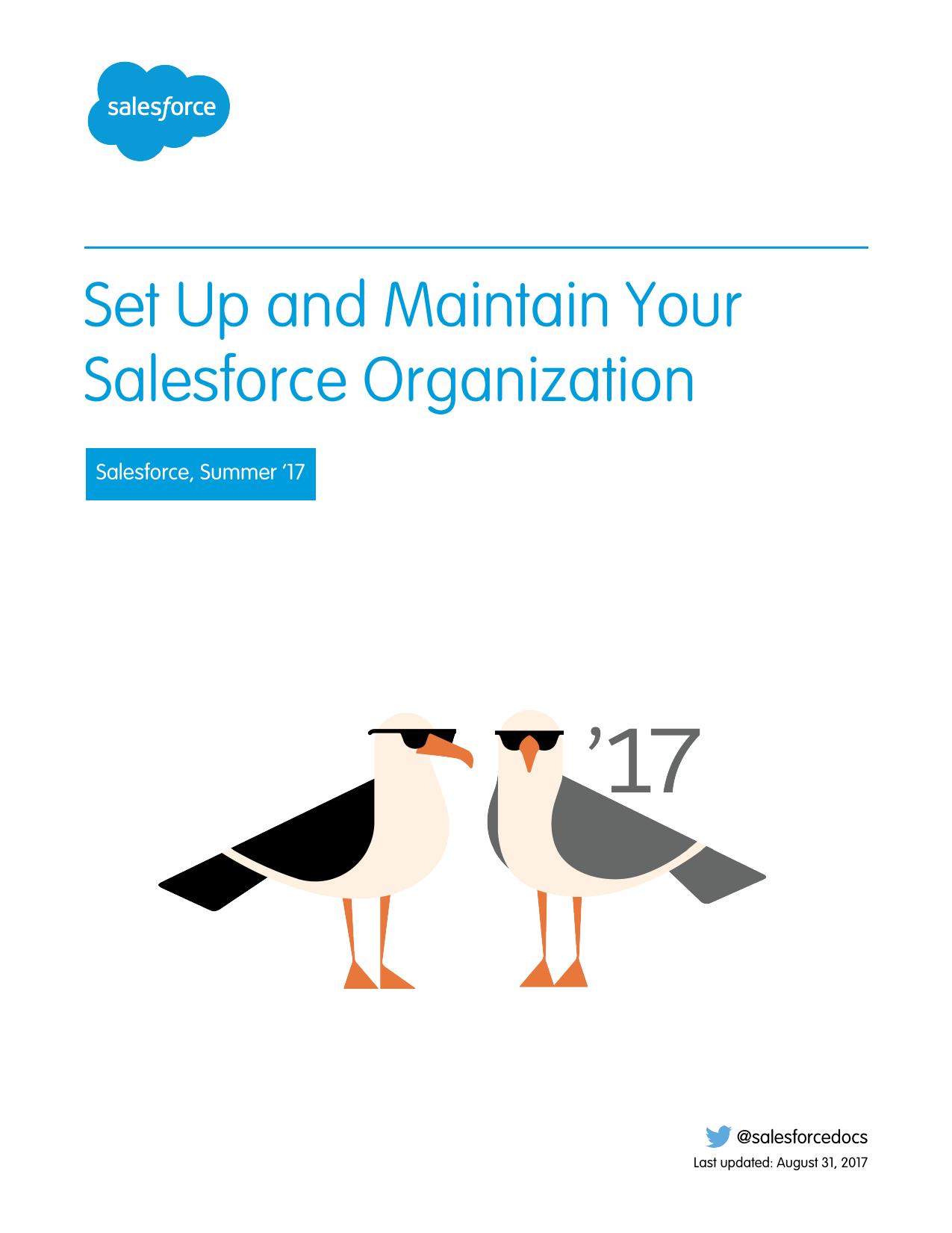 Set Up and Maintain Your Salesforce Organization   manualzz com