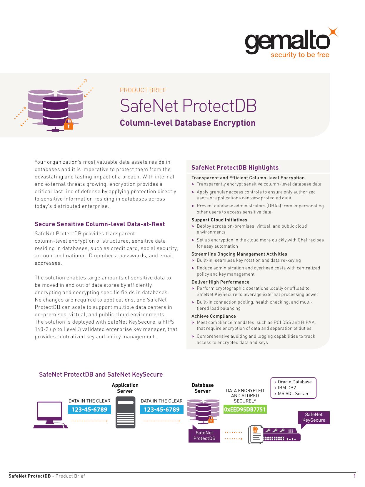SafeNet ProtectDB   manualzz com