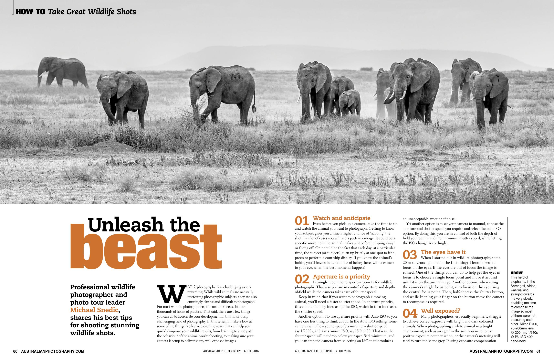 Unleash the Beast – Wildlife Photography | manualzz com